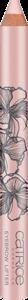 eyebrow lifter